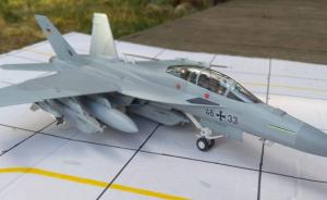 "Boeing EF-18G Growler ""Luftwaffe"""