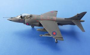 : BAe Sea Harrier FRS. Mk 1