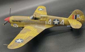 Bausatz: Curtiss P-40F Warhawk