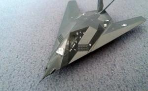 : F-117 A Stealth Fighter