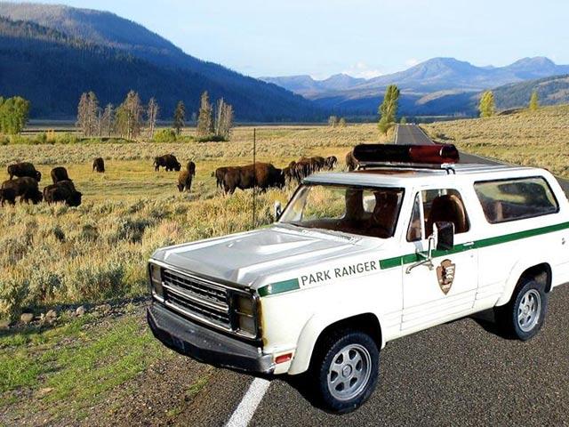 dodge ramcharger. 1979 Dodge Ramcharger