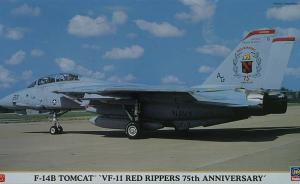 Detailset: F-14B Tomcat 'VF-11 Red Rippers 75th Anniversary'