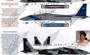 Japanese Agressors F-15 DJ