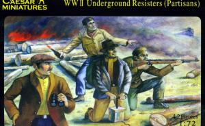 WWII Underground Resisters (Partisans)