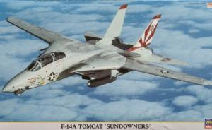 : F-14A Tomcat 'Sundowners'